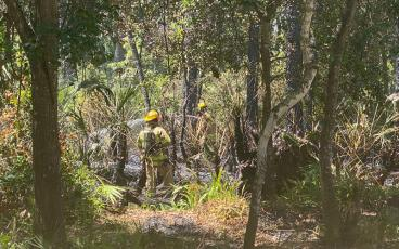 A small fire in the woods drew the rapid attention of our local firefighting teams. PAT FOSTER-TURLEY/FOR THE NEWS-LEADER