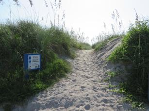 This beach access along Ocean Avenue is a breach of the dune, which creates a flooding hazard. The dune, says coastal geomorphologist Dr. Frank Hopf, protects the north end of Amelia Island from storm surge, and is being damaged by people walking through it to access the beach. The city says it will apply for a grant from the Florida Department of Environmental Protection for funds to build a walkover at the location to protect the dune from damage.  Julia Roberts/News-Leader