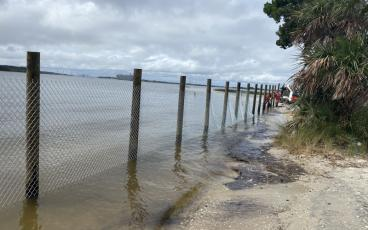 A sturdy chain link and barbed wire fence is going up between Heritage River Road and the bank of the St. Johns River, blocking all river access and obstructing views. A similar fence is planned for the marsh side of the road. JULIA ROBERTS/NEWS-LEADER