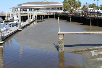 At low tide, there is little to no water in the southern basin of the Fernandina Harbor Marina. Grants administrator Lorelei Jacobs is working to fund dredging through a grant from the Florida Inland Navigation District.